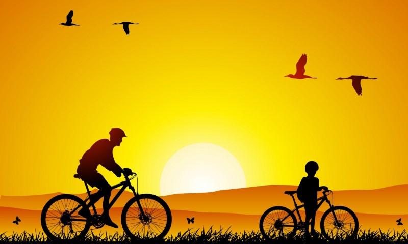 Vai trò của người cha trong việc giáo dục người trẻ